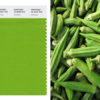 Pantone Greenery, okra